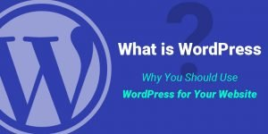 What is WordPress? A Compleate Guide for Beginner's