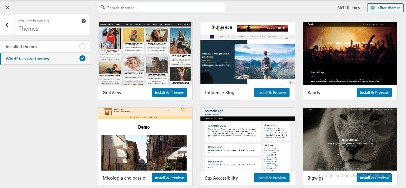 wordpress theme and plugins